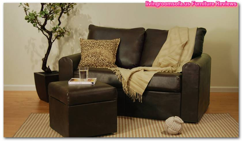 Brown Leather Loveseat Small Spaces