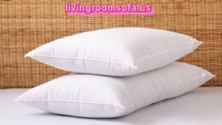 Classic Plush Bed Pillow