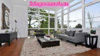 Grey Living Room Area Rugs Design Ideas