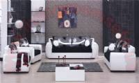 black and white elegant modern living room