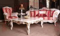 Classic Living room sofa set with carved coffee table