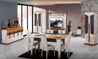 Modern Dining Room Furniture Design Idea